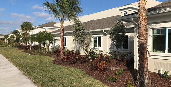 Exterior landscaping view